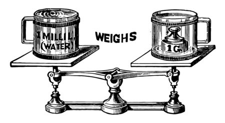 Weight Measurement is shown here vintage line drawing or engraving illustration.