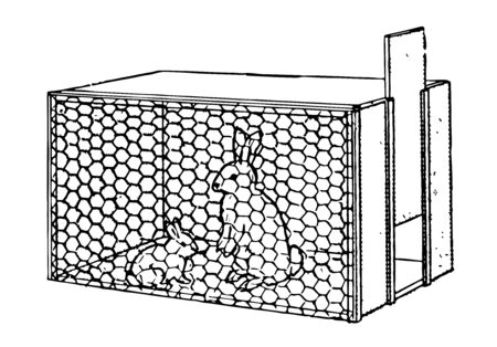 This illustration represents Rabbit hutch with two rabbits, vintage line drawing or engraving illustration.
