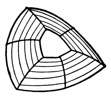 This diagram represents Curvature of Crystal Planes, vintage line drawing or engraving illustration.