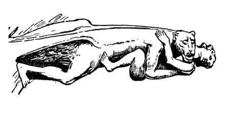 Clermont Gargoyle en France, gargouilles, architecture gothique, becs saillants, sculptés sous différentes formes, architecture animale, humaine, démoniaque, grotesque, ecclésiastique, dessin au trait vintage ou illustration de gravure. Vecteurs