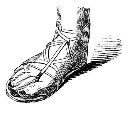 Slipper used are Ancient Middle East vintage line drawing or engraving illustration.
