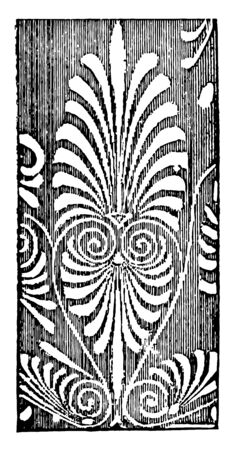 Anthemia is a From a Greek vase vintage line drawing or engraving illustration.