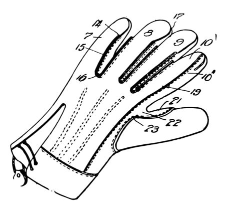 Working Glove which a garment covering the hand vintage line drawing or engraving illustration. Illustration