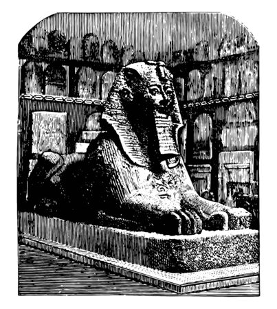 Androsphinx of Thothmes sphinx sphynx most familiar humans head powerful pharaoh vintage line drawing or engraving illustration.