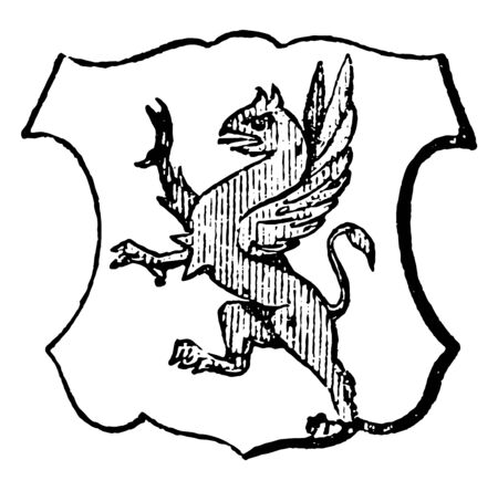 Segreant is a griffin rampant, vintage line drawing or engraving illustration.