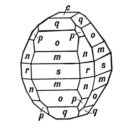 This diagram represents Hydrous Nickel Sulphate, vintage line drawing or engraving illustration. Illusztráció