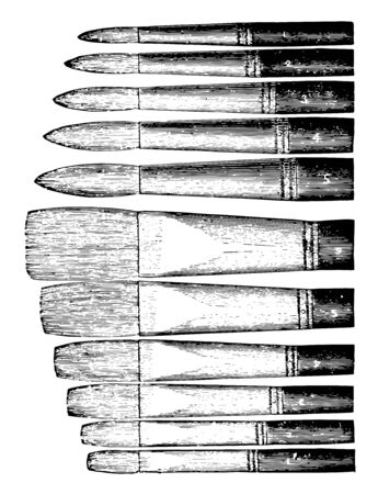 Artists Bristle Brushes are flat brushes vintage line drawing or engraving illustration.