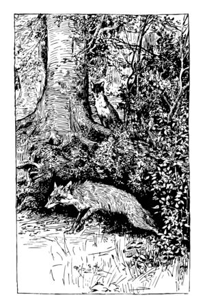 Reynard the Fox: Hiding the Treasure this scene shows the fox secretly watching another fox going away after hiding the treasure in the woods vintage line drawing or engraving illustration Vettoriali