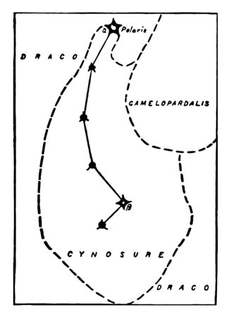 The constellation Ursa Minor or the Cynosure vintage line drawing or engraving illustration.