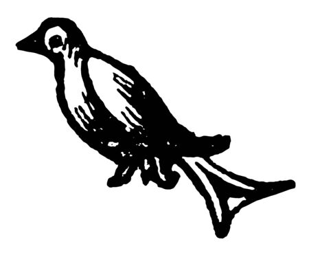 The Martlet is the heraldic charge borne by the fourth eldest son in a family vintage line drawing or engraving illustration.