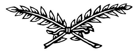 this doodad have two leave branches crosses each other vintage line drawing or engraving illustration. Ilustração