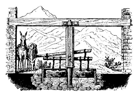 This illustration represents Arrastre which is a rude apparatus used in Mexico vintage line drawing or engraving illustration.