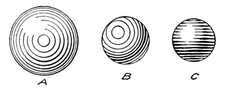 Sphere Shading by the surface would look when shaded and trace a round object or circular template, vintage line drawing or engraving illustration. Illusztráció