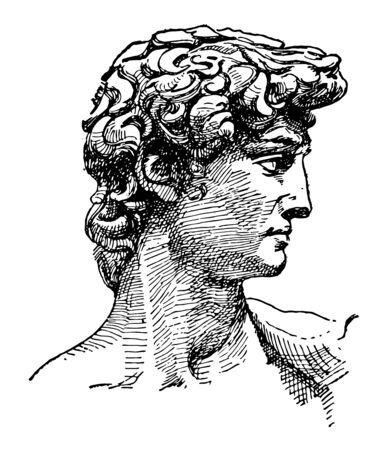 David face of Michelangelos sculpture the biblical hero David vintage line drawing or engraving illustration