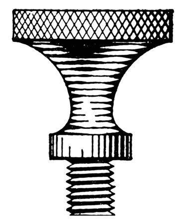 Thumb Screw Shading by double curved surface line and come with either nickel or brass plating,  vintage line drawing or engraving illustration.