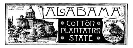 The state banner of Alabama the cotton plantation state it has state house an eagle with raised wings alighting on shield vintage line drawing or engraving illustration Çizim
