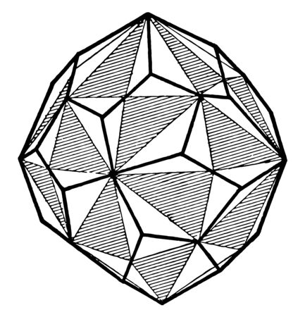 This diagram represents Right Handed Pentagonal Icositetrahedron, vintage line drawing or engraving illustration.
