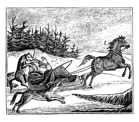 This image represents Wolves Attacking a Traveler vintage line drawing or engraving illustration. Illustration