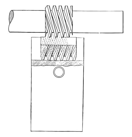 This illustration represents Cutting Triple Worms Screw, vintage line drawing or engraving illustration.