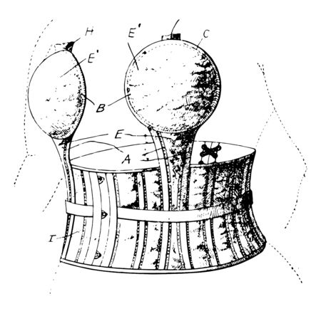 Bust Supporter features a waist attachment for better comfort vintage line drawing or engraving illustration. Ilustrace