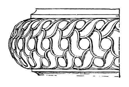 Ionic Base Carved triple guilloche torus platform cap enriched vintage line drawing or engraving illustration.
