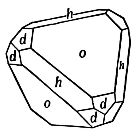 This diagram represents Tetrahedron Cube and Dodecahedron in Combination, vintage line drawing or engraving illustration.
