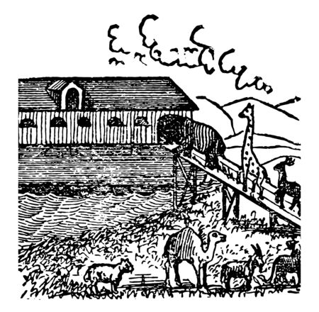 Noahs Ark this scene shows various animals entering the Ark because of the flood vintage line drawing or engraving illustration Illustration