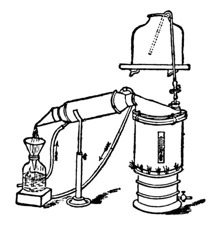 Extract Still is shown here, vintage line drawing or engraving illustration.