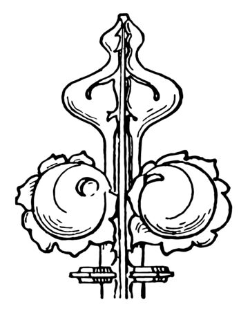 Finial is an ornament generally carved resemble foliage the termination of pinnacles gables spires portions of Gothic architecture vintage line drawing or engraving illustration.