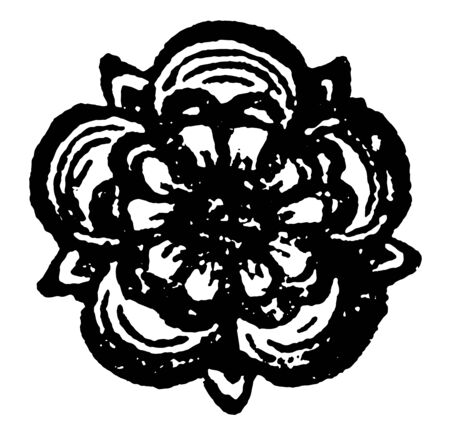 The Rose are heraldic charge borne by the seventh eldest son vintage line drawing or engraving illustration.
