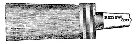 This illustration represents Gloss Oval Varnish Brush which is very thick vintage line drawing or engraving illustration. Illustration