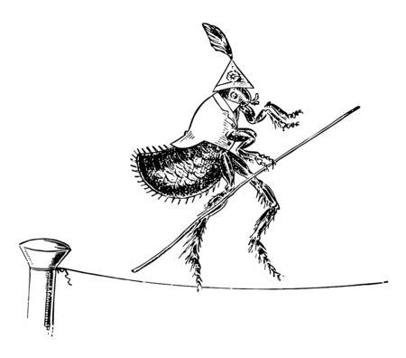 Flea Tight to Rope Diese Szene zeigt einen Floh, der ein Kleid trägt und über ein enges Seil geht, während er eine Vintage-Strichzeichnung oder Gravurillustration hält Vektorgrafik