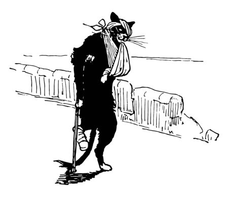 Reynard the Fox: Wounded Tibert this scene shows the injured cat walking with stick eye and front led injured vintage line drawing or engraving illustration