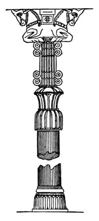 Column from Persepolis when the largest cedars of Lebanon or teak trees of India did not fulfill the required sizes, vintage line drawing or engraving illustration.