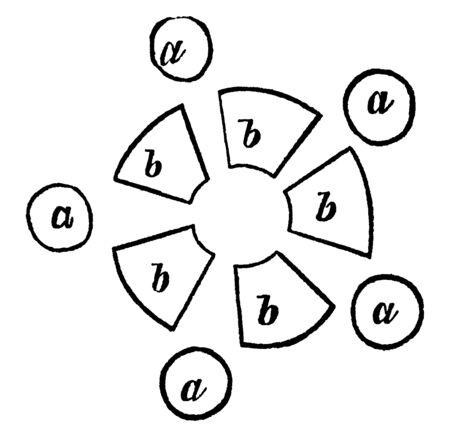 The image showing fig chart of Arrangement of Stamens and Carpels, vintage line drawing or engraving illustration. Иллюстрация