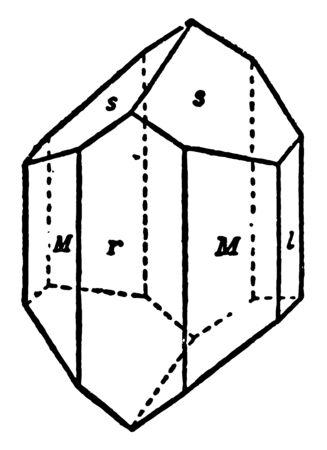 This diagram represents Crystal of Augite vintage line drawing or engraving illustration. Ilustração
