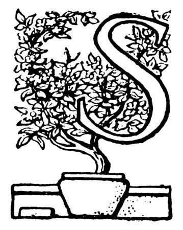 A capital letter S with potted plant, vintage line drawing or engraving illustration Ilustração