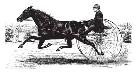 Horse Drawn Buggy is a race type buggy being drawn behind a race horse, vintage line drawing or engraving illustration.