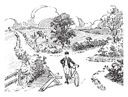 Bicycle is a human powered pedal driven and single track vehicle having two wheels attached to a frame, vintage line drawing or engraving illustration.