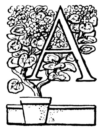 A capital letter A with potted plant, vintage line drawing or engraving illustration Illustration
