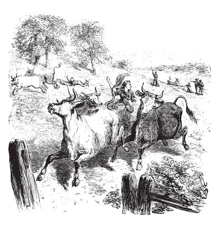 Woman named Hannah Erwin Israel herding cattle away from British soldiers,vintage line drawing or engraving illustration.