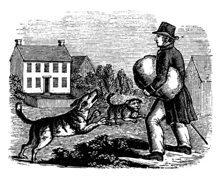Two dogs barking at boy with bag who standing outside the house, vintage line drawing or engraving illustration