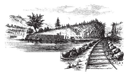 Beverly Dock covered with cord wood is seen near the point on the left, vintage line drawing or engraving illustration.