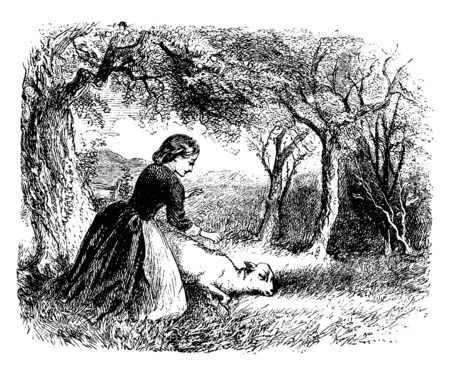 A woman with lamb, lamb fallen on ground, vintage line drawing or engraving illustration Ilustração