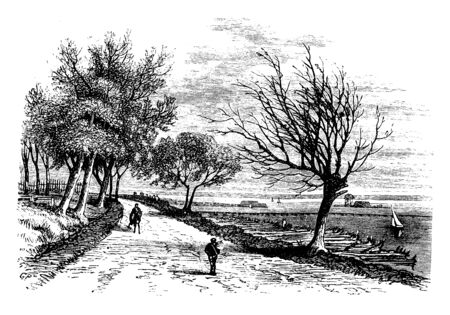 Dirt Road where a man walking along a dirt road, vintage line drawing or engraving illustration. 向量圖像