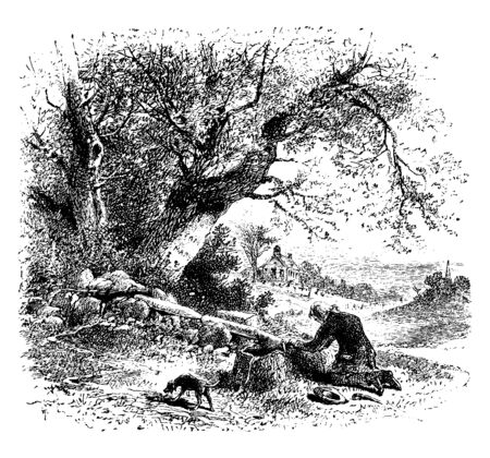 A man kneeling near a tree stump and dog standing near him, hat and stick on ground, vintage line drawing or engraving illustration Illustration