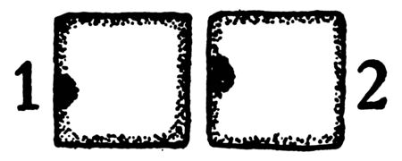 A picture showing the first and second developmental stages of collenchyma. In this stage cross and longitudinal section of a collenchyma cell are in its primary meristem condition, vintage line drawing or engraving illustration. Standard-Bild - 132866216