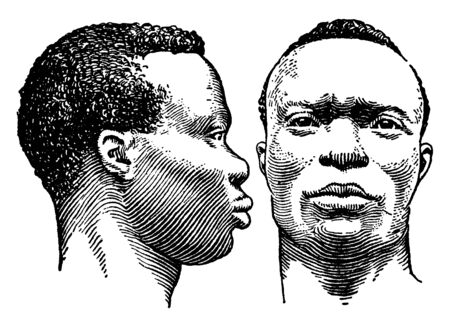 Faces of two Negro men, vintage line drawing or engraving illustration