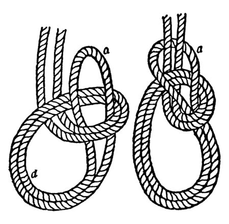 Bowline on a Bight this first part is made similar to the with the double part of the rope, vintage line drawing or engraving illustration.