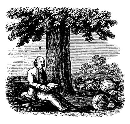 A man sitting under tree and holding book in hands, small fruit falling from tree, and pumpkins on ground, vintage line drawing or engraving illustration Illustration